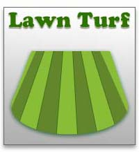 Lawn Turf in Devon